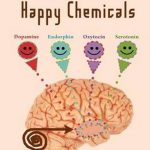 boek-omslag-Meet Your Happy Chemicals - Loretta Graziano Breuning